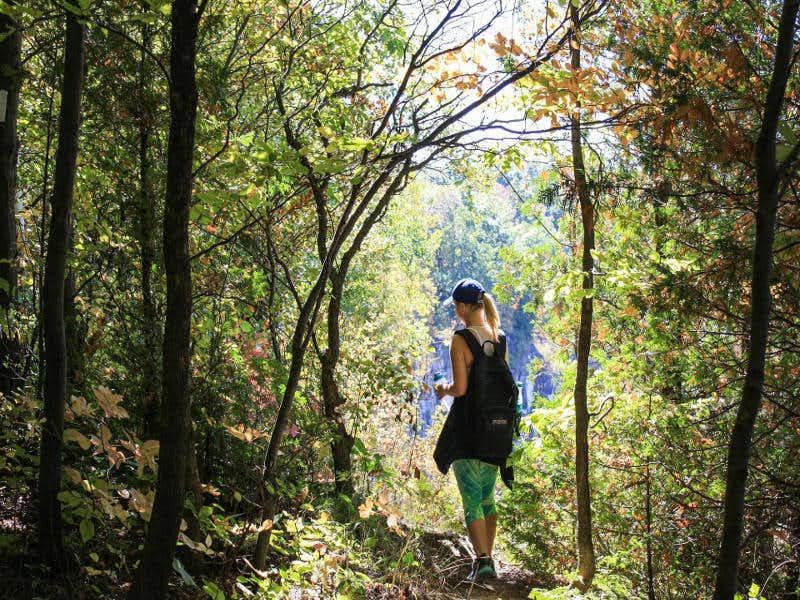 โรคซึมเศร้า วันหนึ่งฉันเดินเข้าป่า